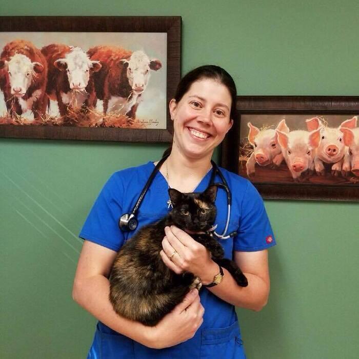 Dr. Erica Smith  photo